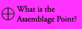 what is the assemblage point?